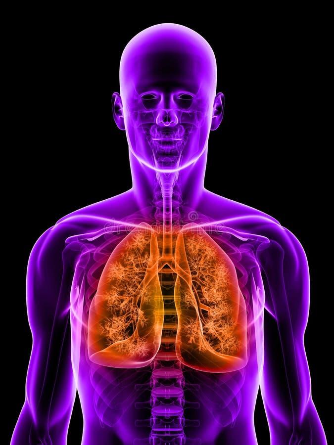 τονισμένος πνεύμονας διανυσματική απεικόνιση