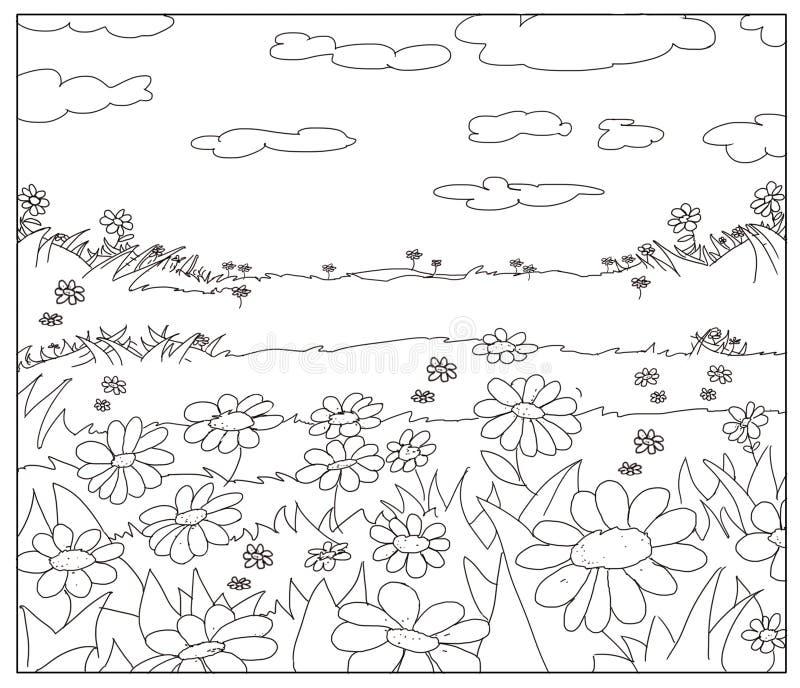 τον ανθίζοντας τομέα που σύρονται σύροντας, τις μαργαρίτες και τα σύννεφα ελεύθερη απεικόνιση δικαιώματος
