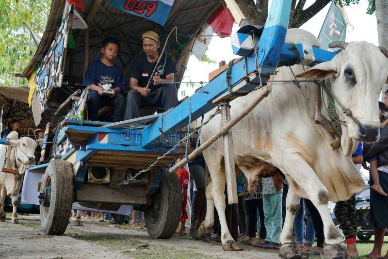 Τον Οκτώβριο του 2017 Ο πατέρας και ο γιος παρευρέθηκαν στο φεστιβάλ κάρρων βοδιών του 2017, Yogyakarta, Ινδονησία στοκ εικόνα