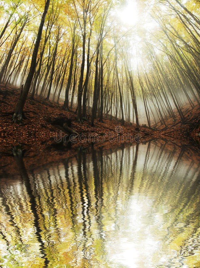 τοπία φθινοπώρου στοκ φωτογραφία