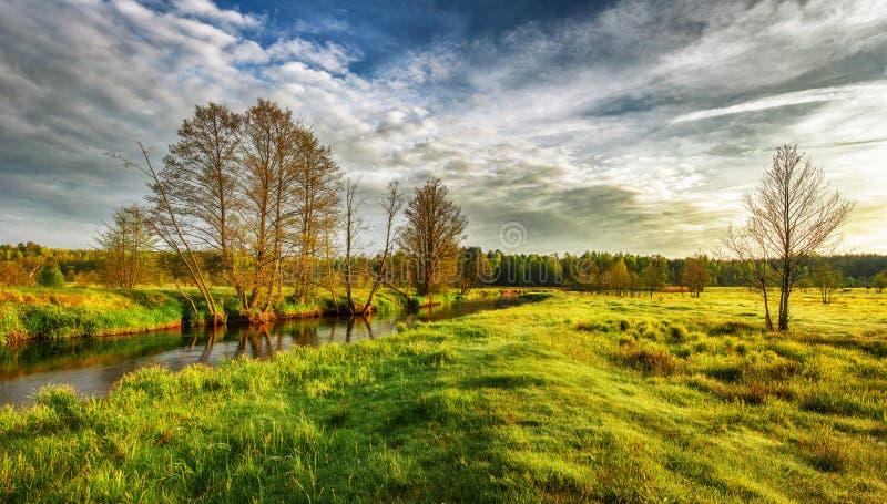 Τοπίο άνοιξη τη φωτεινή ηλιόλουστη ημέρα Φυσικός χορτοτάπητας από τον ποταμό Πράσινο λιβάδι άνοιξη στην ακτή του ποταμού στοκ φωτογραφίες