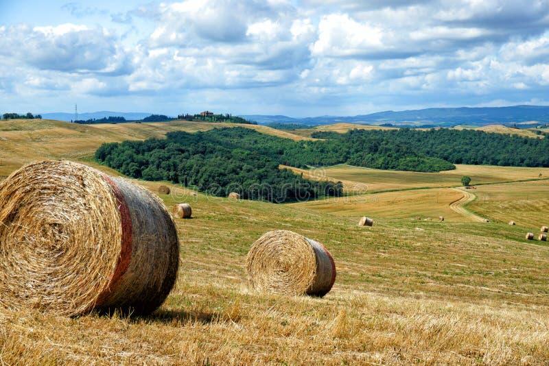 τοπίο αγροτική Τοσκάνη στοκ εικόνες