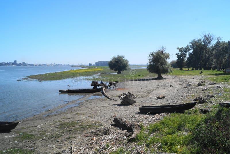 Τοπίο από το δέλτα Δούναβη με τις βάρκες και το άλογο με το κάρρο, Ρουμανία του δέλτα Dunarii στοκ εικόνα