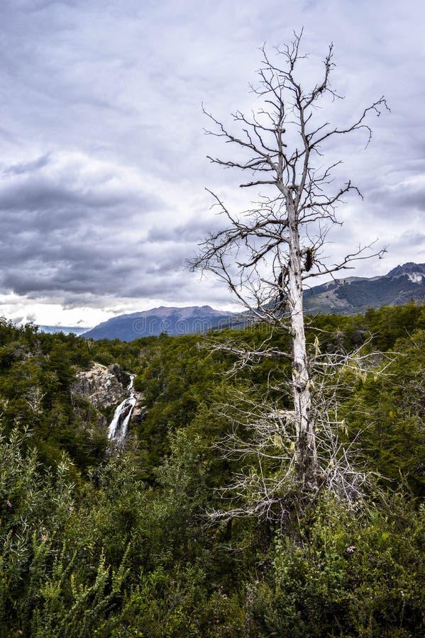 Τοπίο Αργεντινή, SAN Martin de Los Άνδεις στοκ εικόνες με δικαίωμα ελεύθερης χρήσης