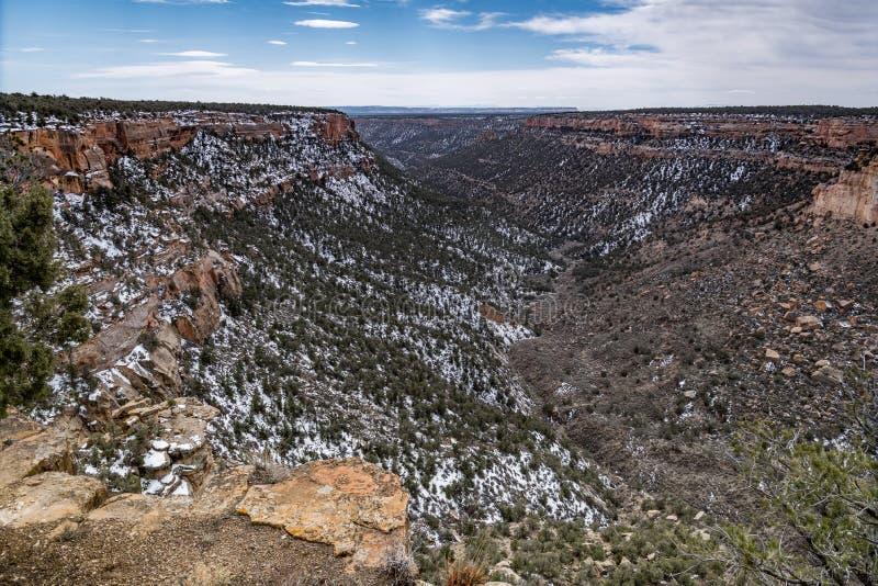 Τοπίο βουνών ερήμων πάρκων Mesa verde εθνικό στοκ φωτογραφία με δικαίωμα ελεύθερης χρήσης