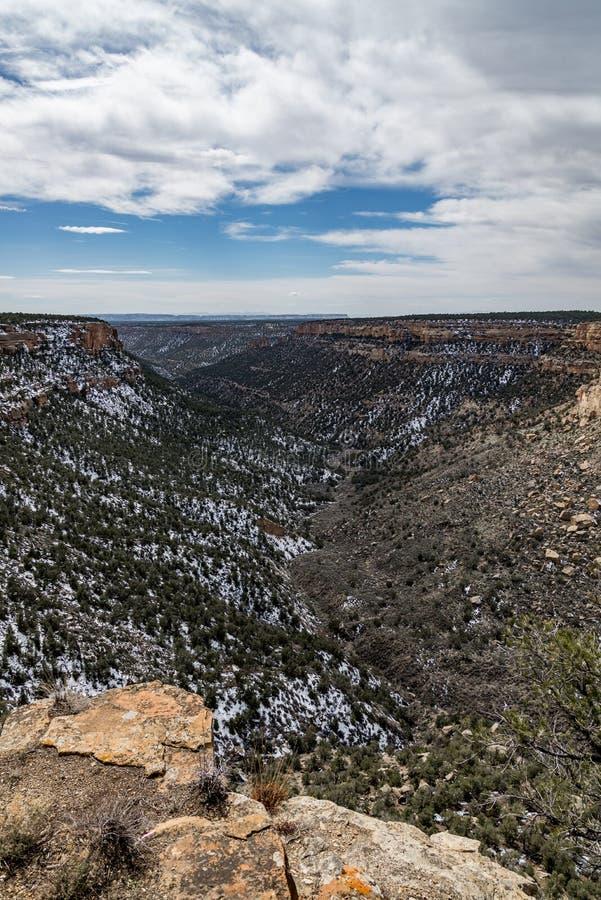 Τοπίο βουνών ερήμων πάρκων Mesa verde εθνικό στοκ φωτογραφία
