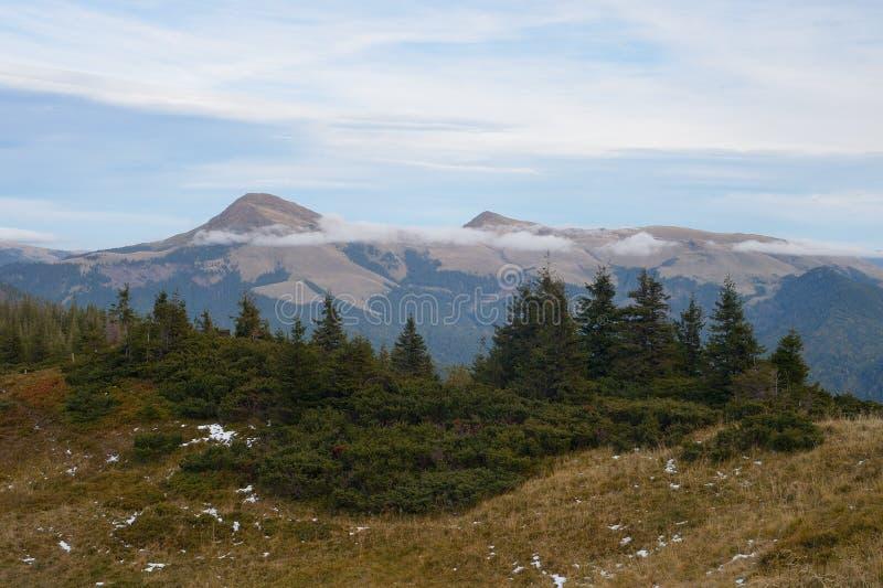 Download Τοπίο βουνών με τα δέντρα στοκ εικόνες. εικόνα από highlands - 62703444