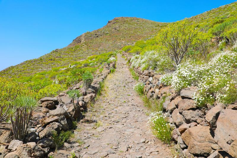 Τοπίο βουνών με το ίχνος πεζοπορίας Arona, Tenerife, Ισπανία στοκ φωτογραφίες
