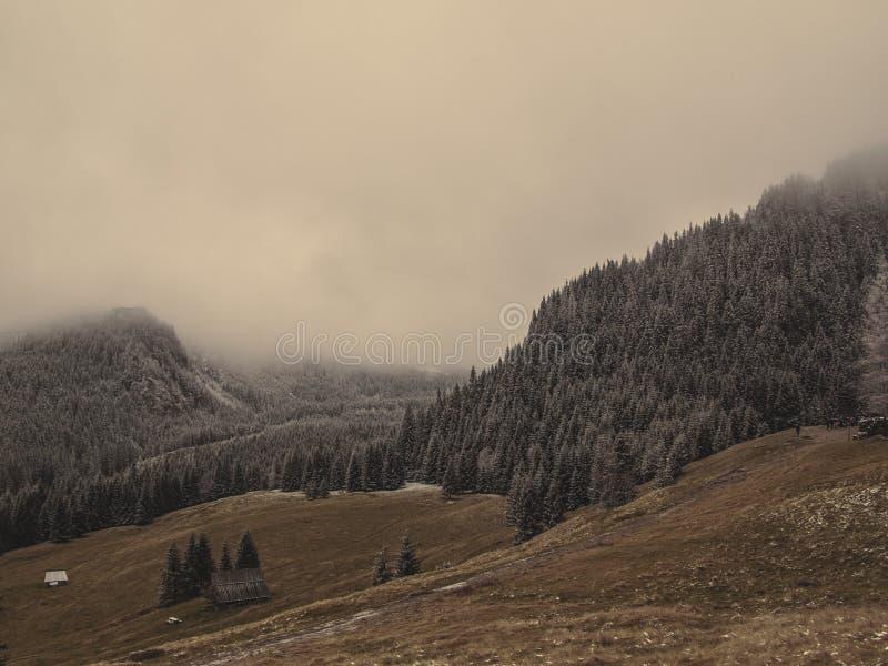 Τοπίο βουνών στην υδρονέφωση στοκ εικόνα με δικαίωμα ελεύθερης χρήσης