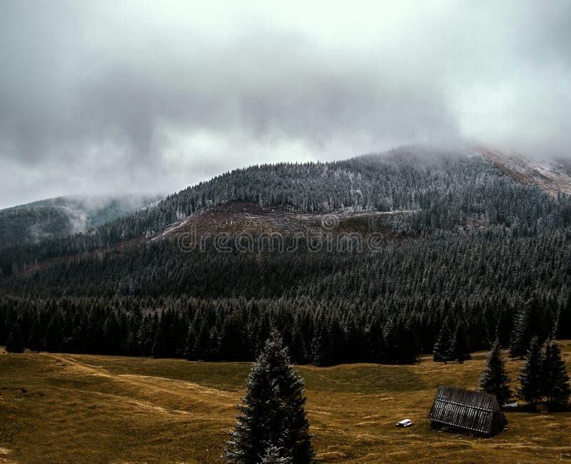 Τοπίο βουνών στην υδρονέφωση στοκ εικόνες