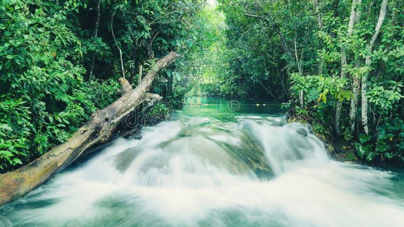 Τοπίο ενός καταρράκτη στον ποταμό Formoso στην παλαμίδα - κράτη μέλη, Βραζιλία στοκ φωτογραφίες