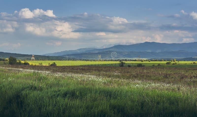 Τοπίο επαρχίας στοκ εικόνα με δικαίωμα ελεύθερης χρήσης