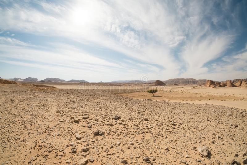 Τοπίο ερήμων, Αίγυπτος, νότιο Sinai στοκ εικόνες