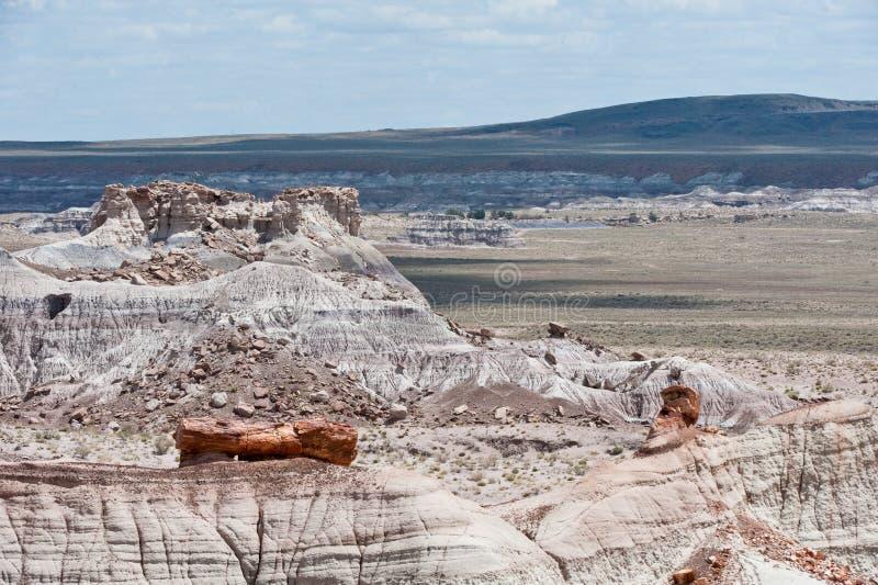 τοπίο ερήμων της Αριζόνα στοκ φωτογραφία με δικαίωμα ελεύθερης χρήσης