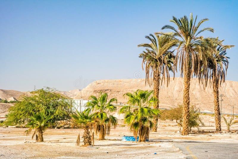 Τοπίο ερήμων Negev στοκ φωτογραφία