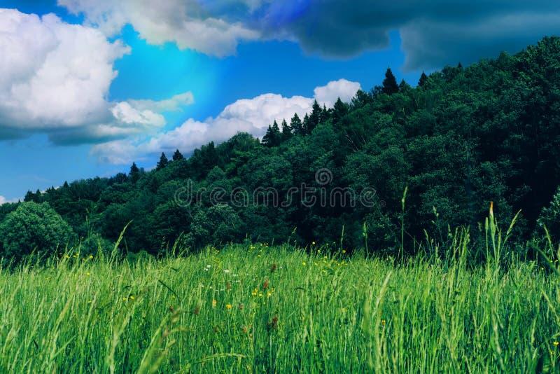 Τοπίο θερινής επαρχίας στοκ φωτογραφία με δικαίωμα ελεύθερης χρήσης