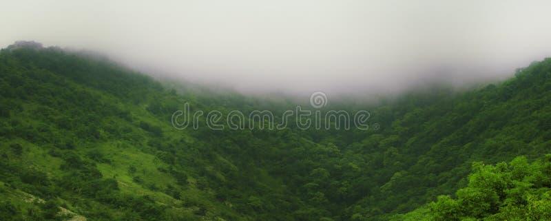 Τοπίο θερινών βουνών με το δάσος και ομίχλη, φυσικό υπόβαθρο, θέση για το κείμενο στοκ φωτογραφία