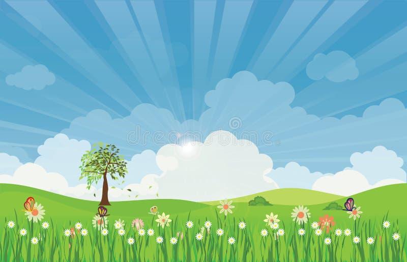 Τοπίο θερινών λιβαδιών άνοιξης με τις ακτίνες και τα λουλούδια ήλιων ελεύθερη απεικόνιση δικαιώματος