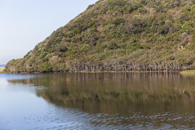 Τοπίο λιμνοθαλασσών ποταμών στοκ φωτογραφία