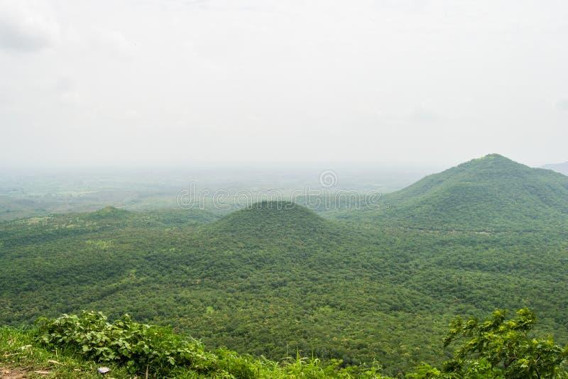 Τοπίο και δάσος στοκ εικόνες με δικαίωμα ελεύθερης χρήσης