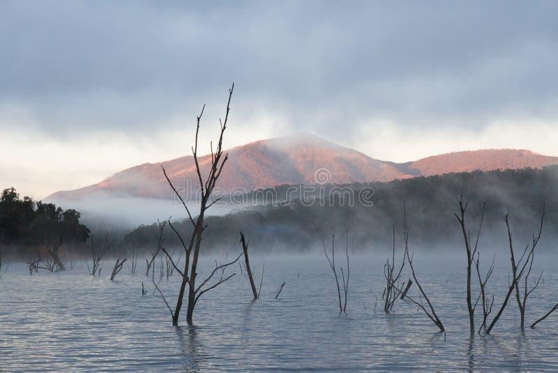 Τοπίο και βουνά Eildon λιμνών στοκ φωτογραφία