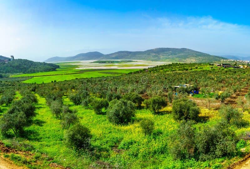Τοπίο και ύπαιθρος στην κοιλάδα Netofa στοκ φωτογραφία με δικαίωμα ελεύθερης χρήσης