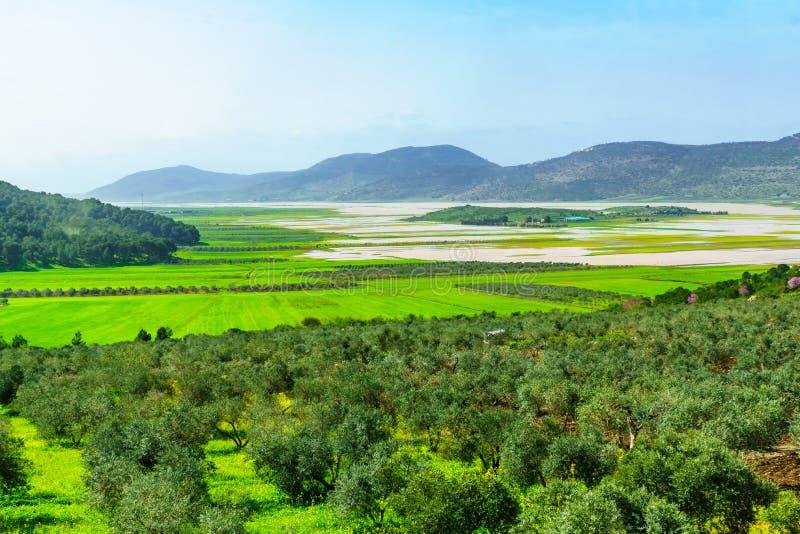 Τοπίο και ύπαιθρος στην κοιλάδα Netofa στοκ εικόνες
