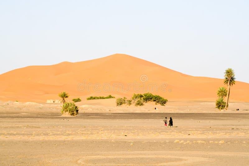 τοπίο Μαροκινός αμμόλοφων στοκ φωτογραφίες με δικαίωμα ελεύθερης χρήσης