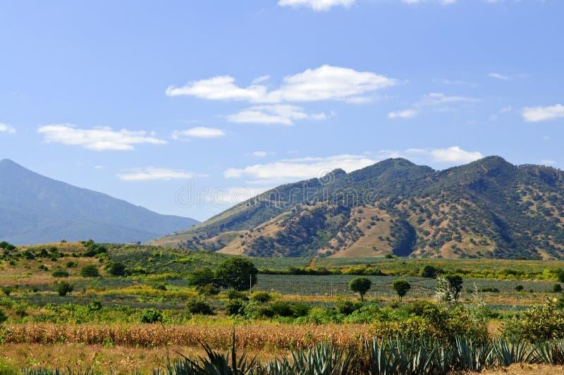 τοπίο Μεξικό jalisco στοκ φωτογραφία με δικαίωμα ελεύθερης χρήσης