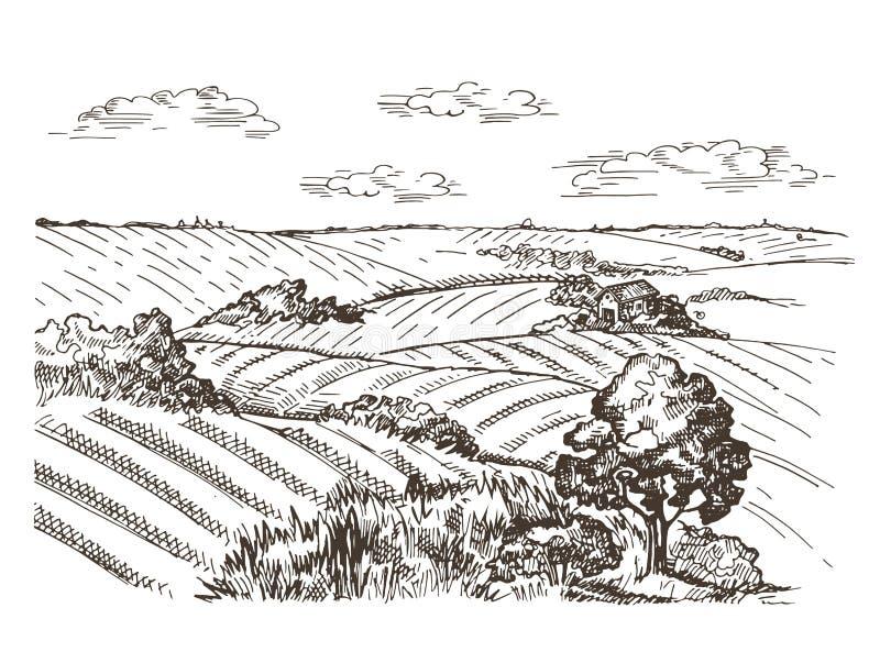 Τοπίο με τα σπίτια σίτου τομέων και χωριών E διανυσματική απεικόνιση