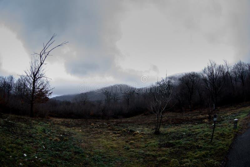 Τοπίο με την όμορφη ομίχλη στο δάσος στο λόφο ή ίχνος μέσω ενός μυστήριου χειμερινού δάσους με τα φύλλα φθινοπώρου στο έδαφος Δρό στοκ φωτογραφίες με δικαίωμα ελεύθερης χρήσης
