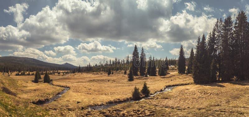 Τοπίο με τη χλοώδη κοιλάδα, τα δέντρα και το ρεύμα, νεφελώδης ουρανός στοκ φωτογραφία με δικαίωμα ελεύθερης χρήσης