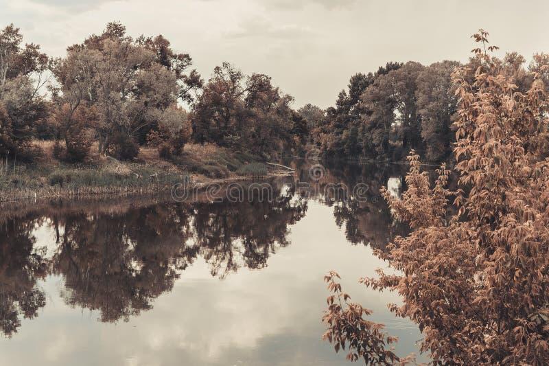 Τοπίο με τον ποταμό, τα πράσινους δέντρα και τον ουρανό στοκ φωτογραφία με δικαίωμα ελεύθερης χρήσης