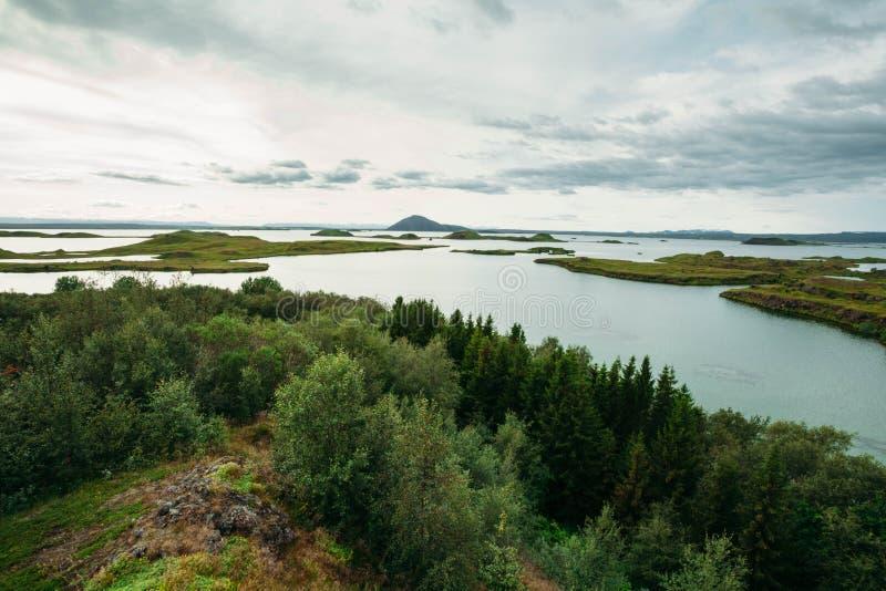 Τοπίο με το δάσος και τη θάλασσα και το νεφελώδη ουρανό στοκ φωτογραφίες με δικαίωμα ελεύθερης χρήσης