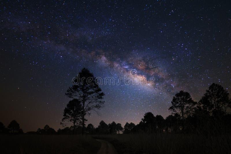Τοπίο με το γαλακτώδη γαλαξία τρόπων, νυχτερινός ουρανός με τα αστέρια και silhou στοκ φωτογραφία με δικαίωμα ελεύθερης χρήσης
