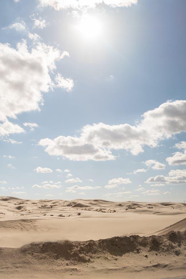 Τοπίο μιας μόνης ερήμου το μεσημέρι στοκ εικόνα