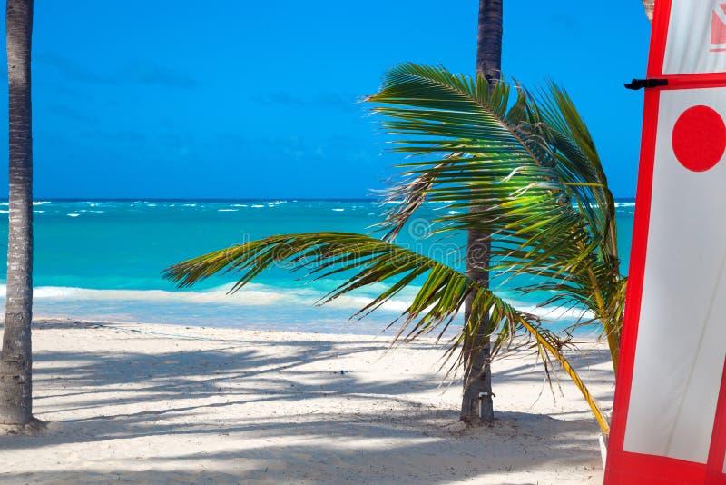 Τοπίο μιας όμορφης καραϊβικής τροπικής παραλίας με το σερφ Άμμος, φοίνικες και η θάλασσα του τροπικού νησιού στοκ εικόνες