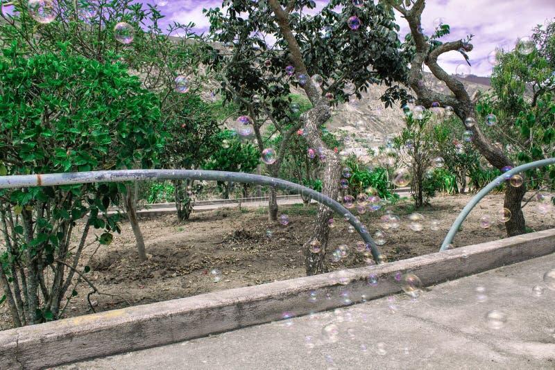 Τοπίο, μύγα φυσαλίδων σαπουνιών ενάντια στο σκηνικό των βουνών και των δέντρων στοκ εικόνα