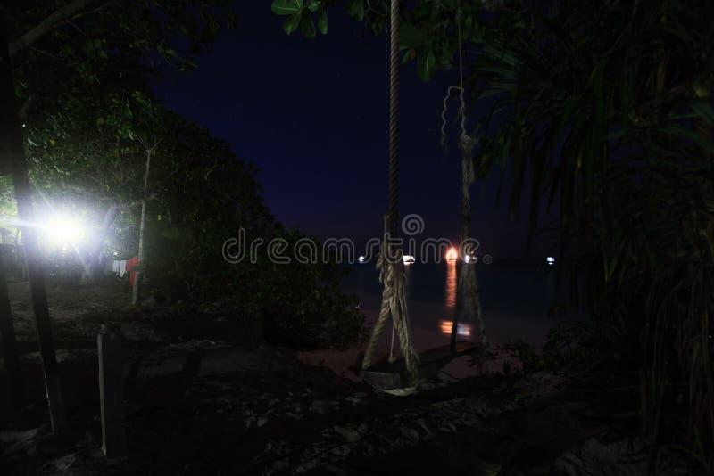 Τοπίο νύχτας στη ζούγκλα στοκ εικόνες