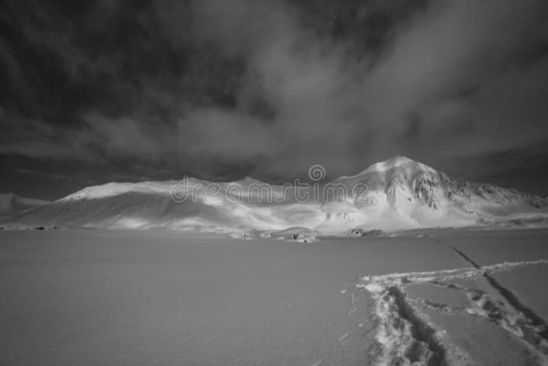 Τοπίο νύχτας της Αρκτικής στοκ εικόνα με δικαίωμα ελεύθερης χρήσης