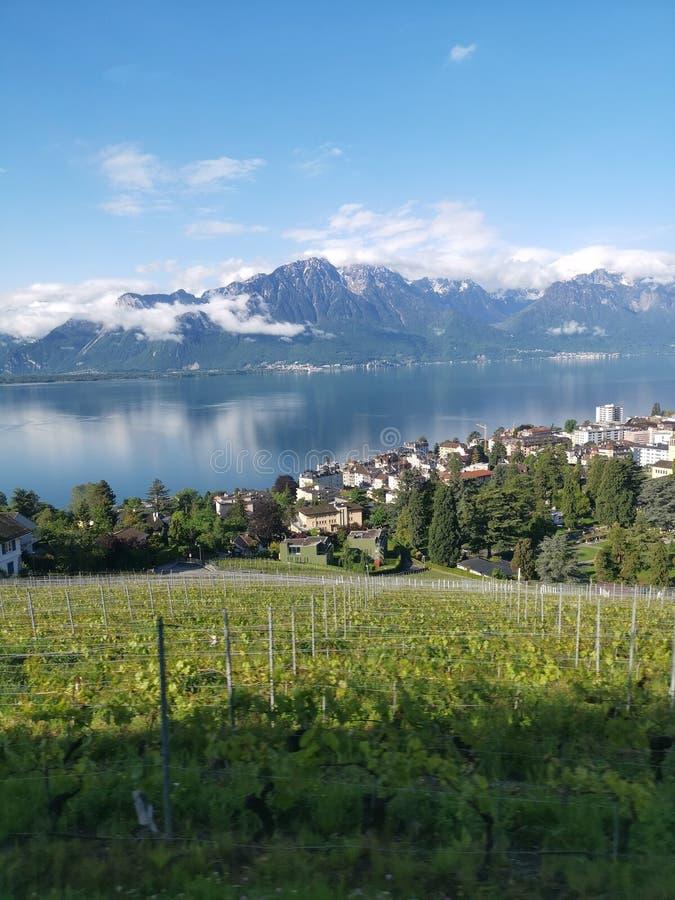 Τοπίο πέρα από τη λίμνη Γενεύη, τον αμπελώνα, την πόλη και τα ελβετικά όρη ε στοκ φωτογραφία
