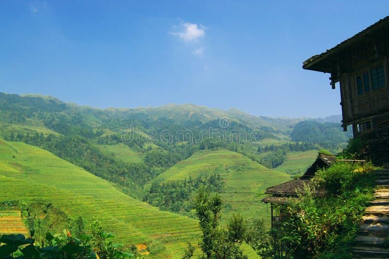 τοπίο πεδίων επαρχίας της Κίνας στοκ εικόνες