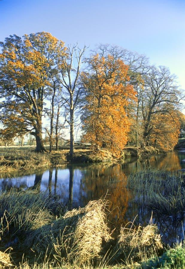 Τοπίο ποταμών - ΑΠΟΚΛΕΙΣΤΙΚΟ στοκ φωτογραφία με δικαίωμα ελεύθερης χρήσης