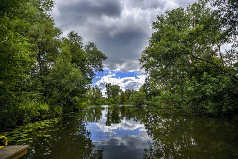 Τοπίο ποταμών, πρασινάδα από το νερό στοκ φωτογραφία