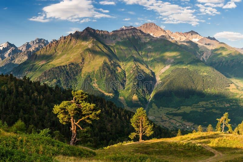 Τοπίο πρωινού με τα δέντρα και τα βουνά στοκ εικόνες