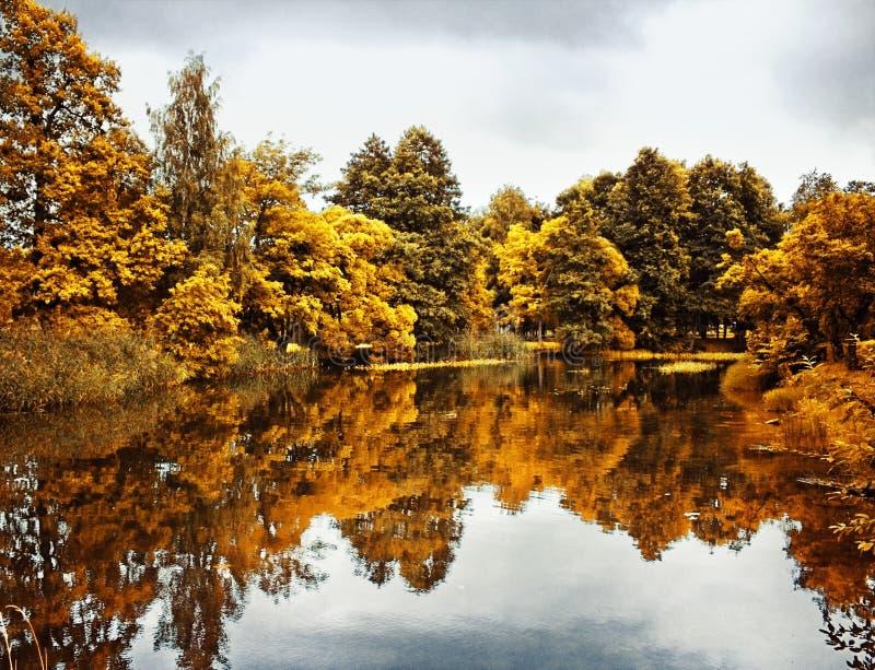 τοπίο πτώσης, ομορφιά του φθινοπώρου - φύση και έννοια περιβάλλοντος στοκ φωτογραφία με δικαίωμα ελεύθερης χρήσης
