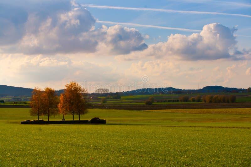Τοπίο στα πεδία της Φλαμανδικής περιοχής, Βέλγιο στοκ εικόνα