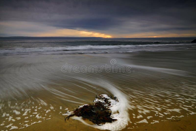 Τοπίο στην ΑΜΕΡΙΚΑΝΙΚΗ δυτική ακτή στοκ εικόνες με δικαίωμα ελεύθερης χρήσης