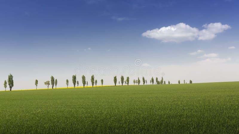 Τοπίο στην Ανατολική Γερμανία την άνοιξη με τα δέντρα στοκ εικόνες