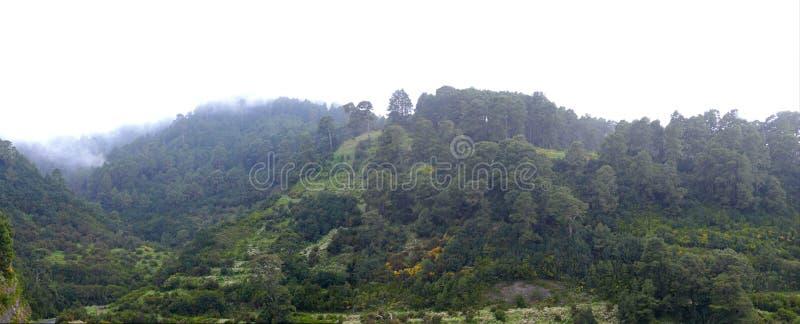 Τοπίο στη βόρεια ακτή Lapalma νησιών στοκ εικόνες με δικαίωμα ελεύθερης χρήσης